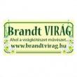 Brandt Virág - Pestújhely