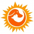 Napfivér Állatorvosi Rendelő