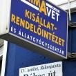 Primavet Állatgyógyszertár és Kisállat-Felszerelés