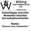 Wiking számítástechnika Kft. logoja