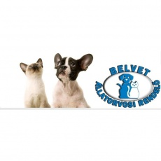 Belvet Állatorvosi Rendelő