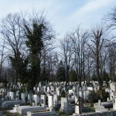 Rákospalotai temető (Fotó: charlie_hu - panoramio.com)