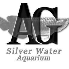 AG - Silver Water Aquarium Webáruház