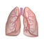Őrjárat utcai Szakrendelő - Tüdőgondozó